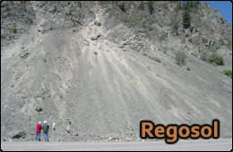 regosol